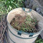 草刈り・枝切をしてきました! 尼崎市尾浜町