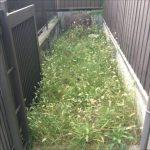 草刈り作業に行ってまいりました! 尼崎市上ノ島町